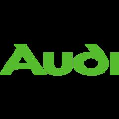 Audi Timingset autogereedschap