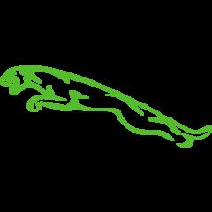 Jaguar Timingset autogereedschap