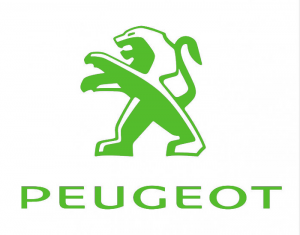 Peugeot Timingset autogereedschap