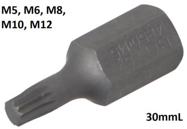 Bit (3/8) buitenzeskant veeltand (voor XZN)