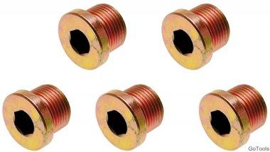 Olie aftapschroeven voor BGS 126 M17 x 1,5 mm 5-delig